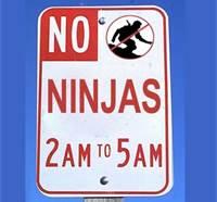 no ninjas