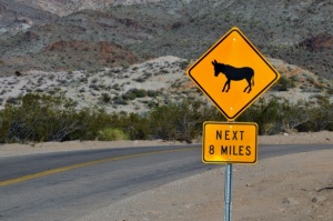 donkey-crossing-warning-sign