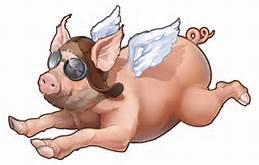 flying-pig